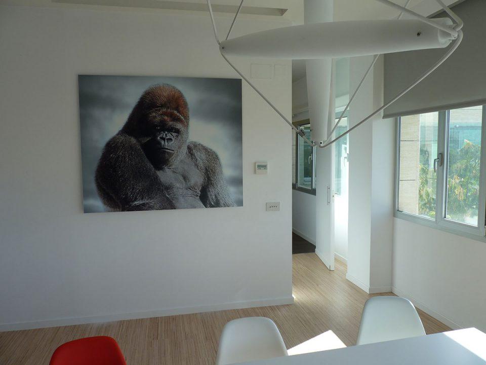 Proyecto de arte en Marp